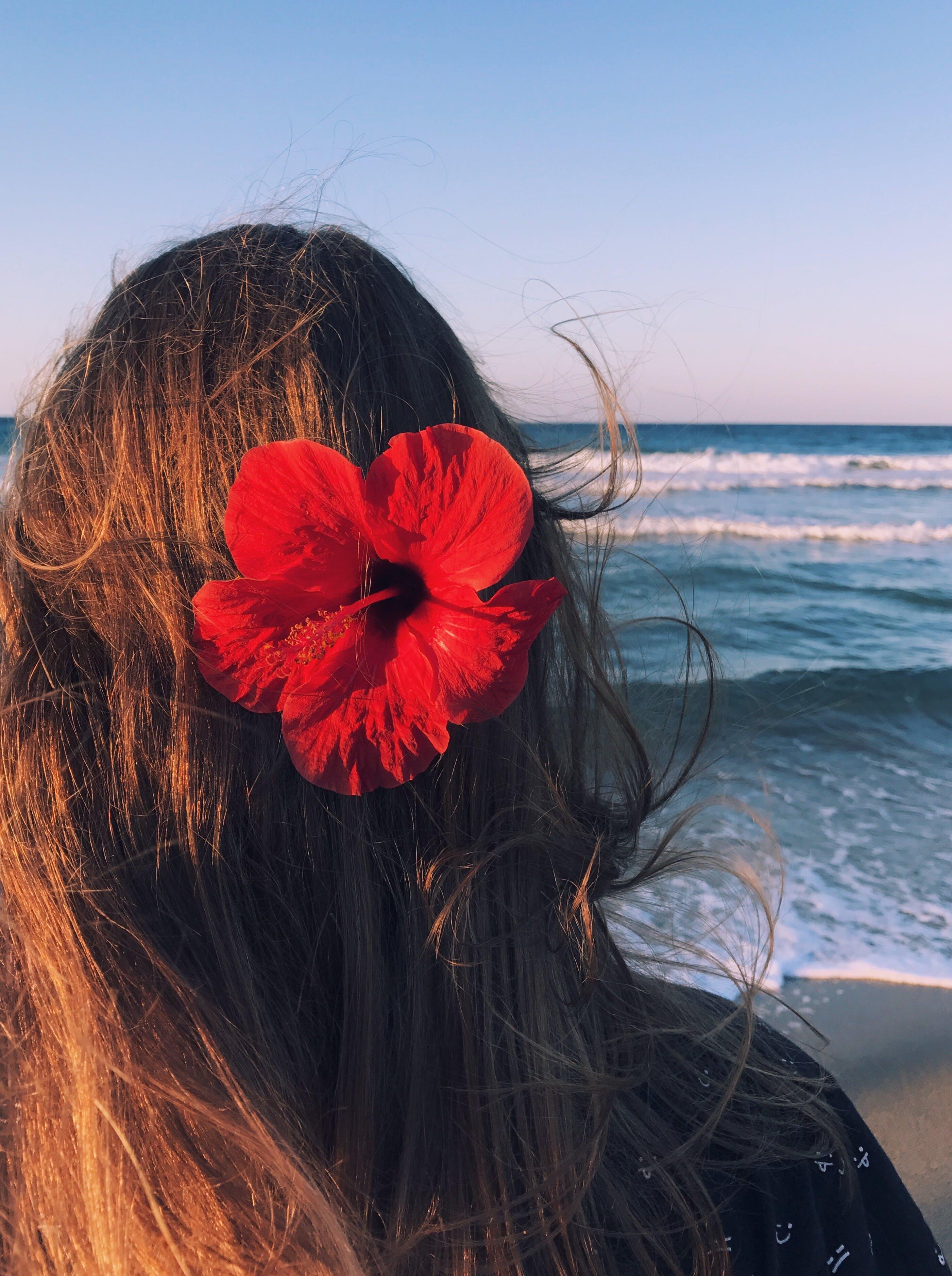 Základová fotografie zdarma na téma dáma, dovolená, flóra, holka