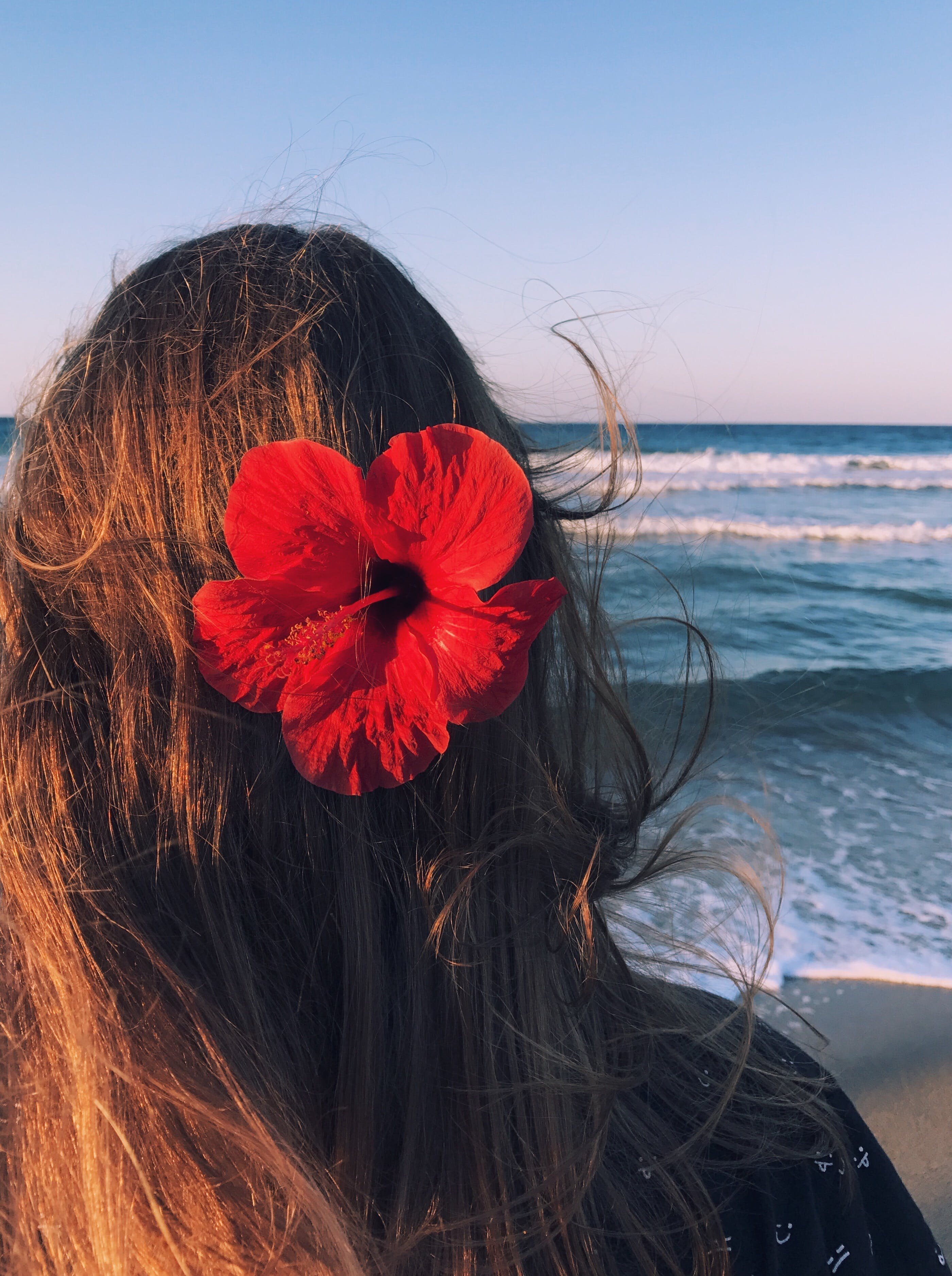 Photo of a Woman With Hibiscus on Her Head Facing Towards the Sea