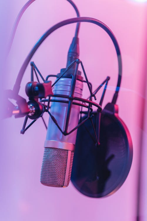 Black and Red Microphone With Stand