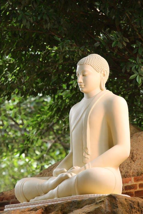 Ảnh lưu trữ miễn phí về ban ngày, bức tượng, cây, Châu Á