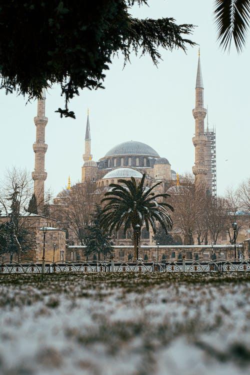 Gratis arkivbilde med åndelighet, arkitektur, blå moské