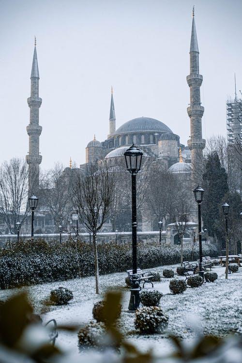 Gratis arkivbilde med arkitektur, blå moské, by