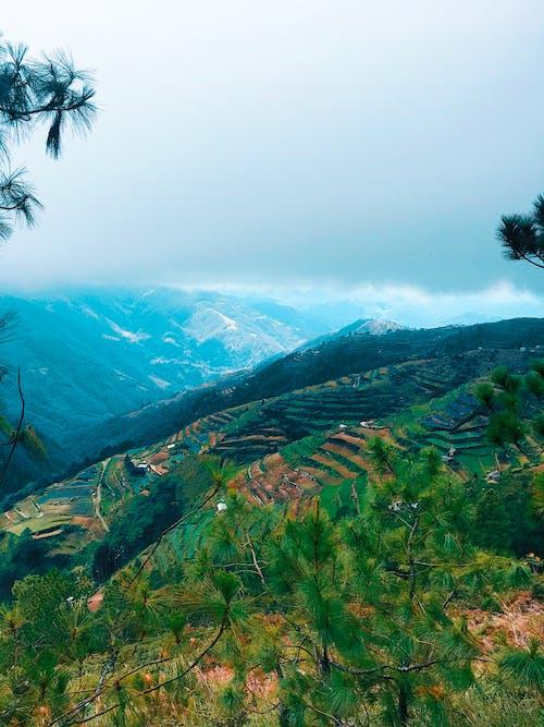 Základová fotografie zdarma na téma fotografie přírody, hora, matka příroda, příroda
