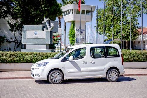 Immagine gratuita di asfalto, autista, auto