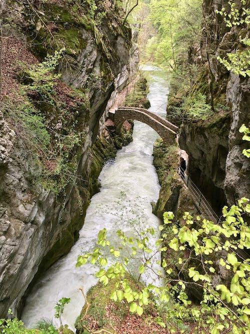 Darmowe zdjęcie z galerii z l'areuse, neuchã ¢ tel, puente, rio