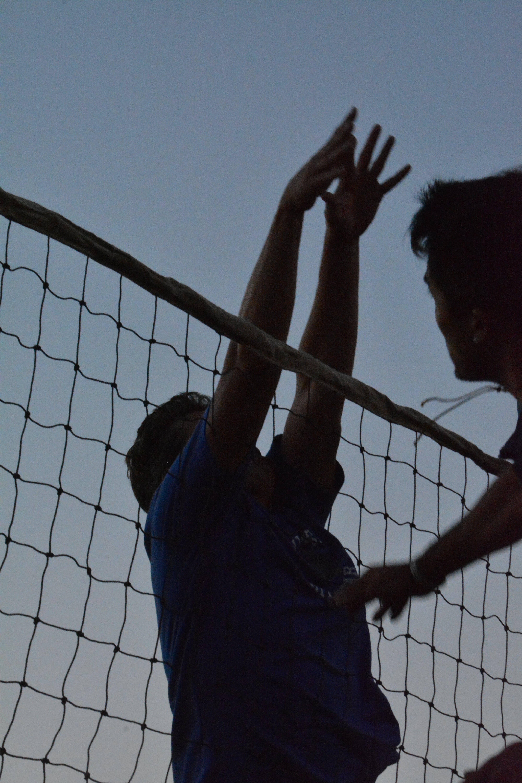 Kostenloses Stock Foto zu sport, vollerball, volley