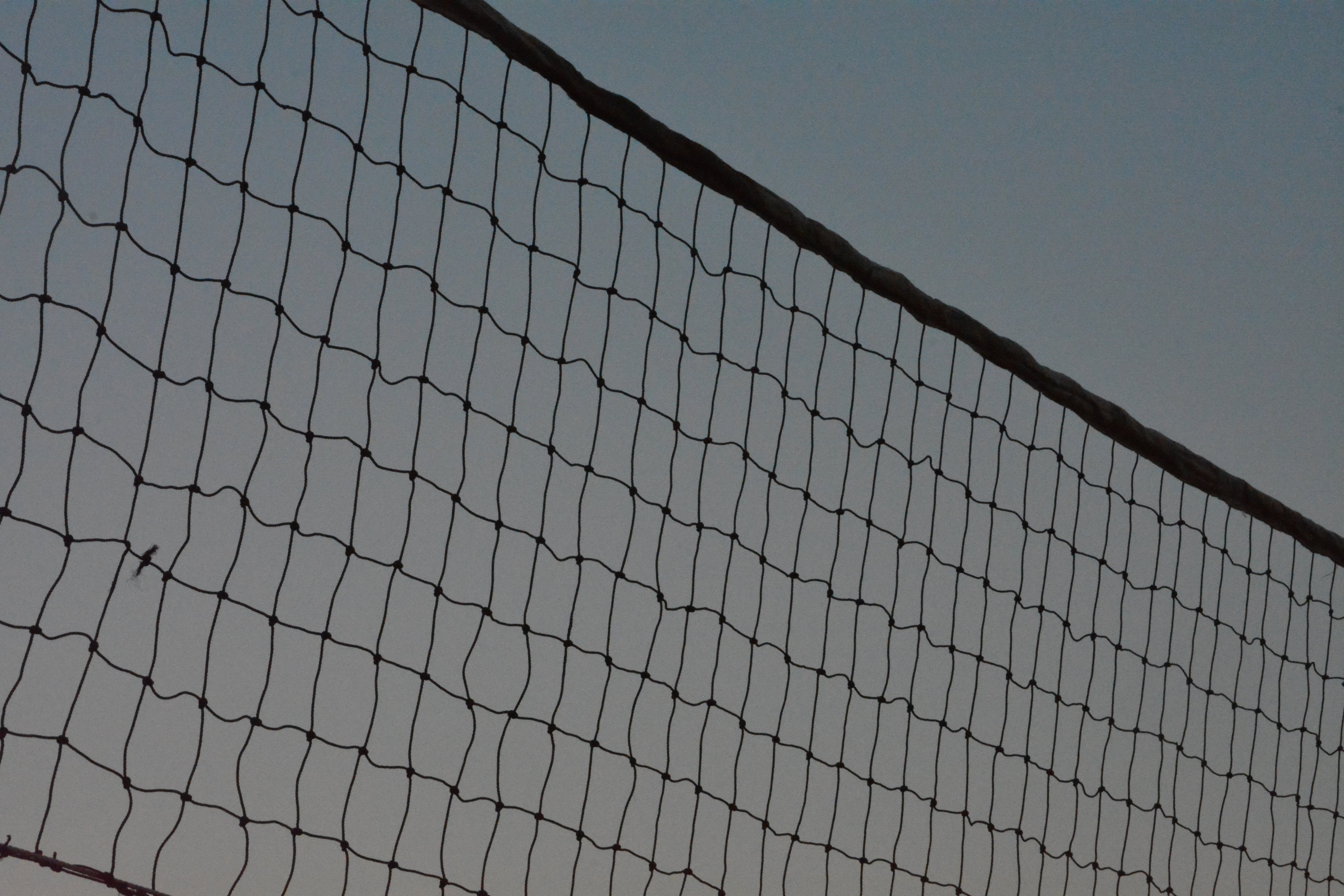 Free stock photo of sport, sports, volleryball, volley