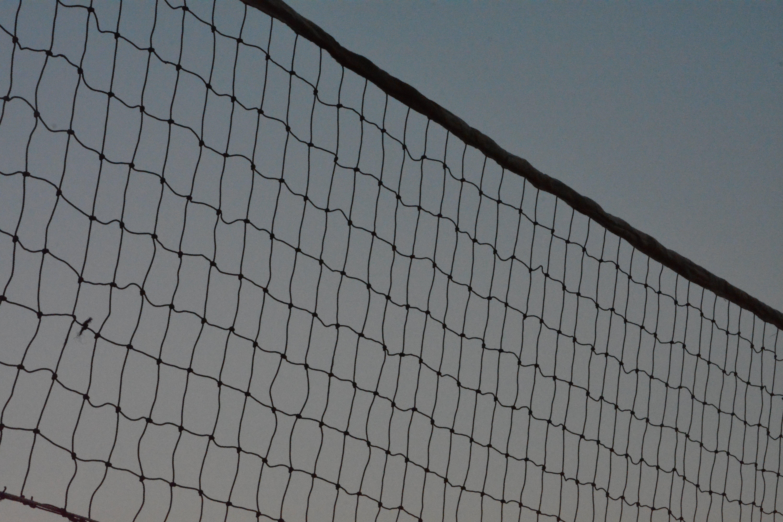 Kostenloses Stock Foto zu sport, volley, volleyball