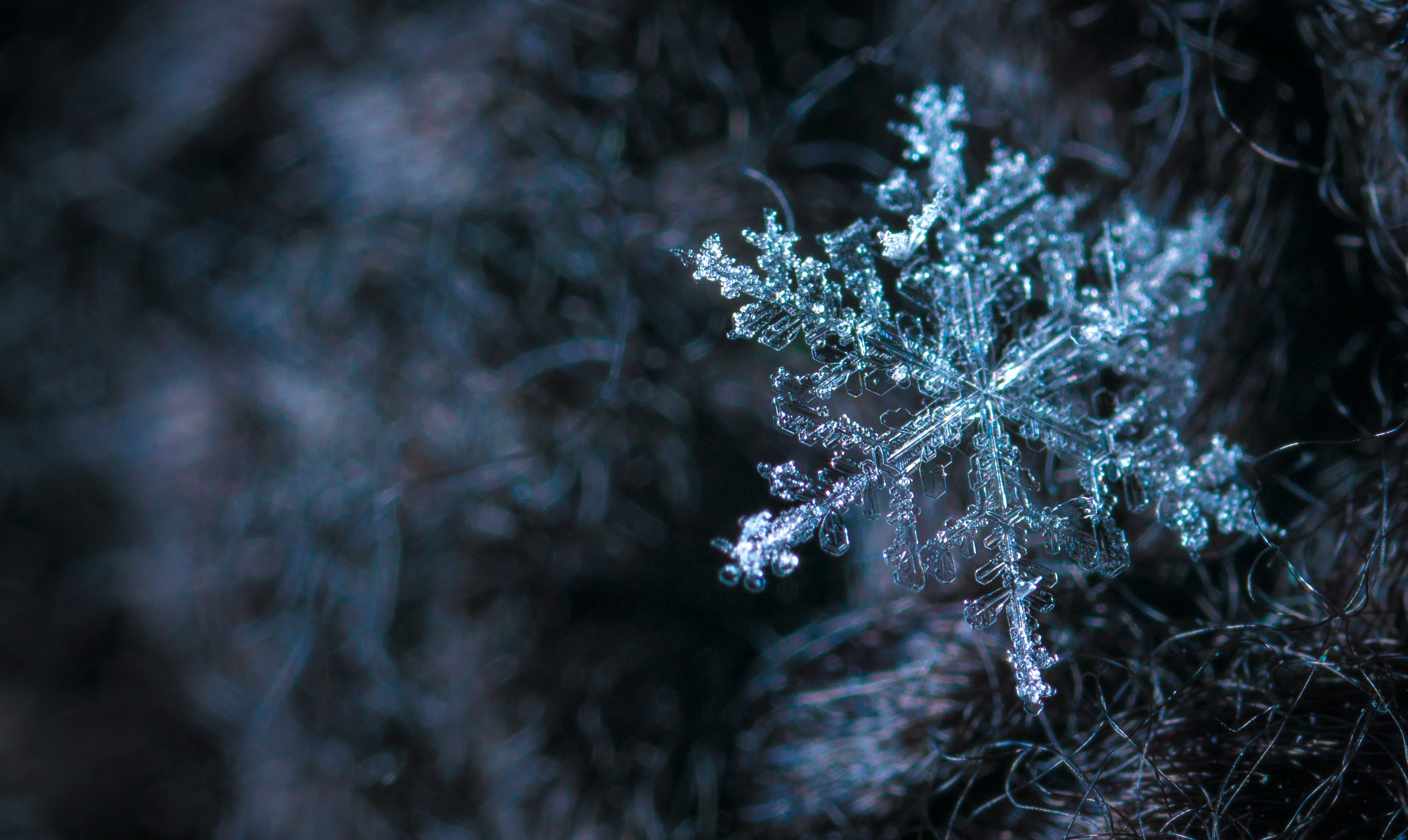 Close-up Photography of Snowflake