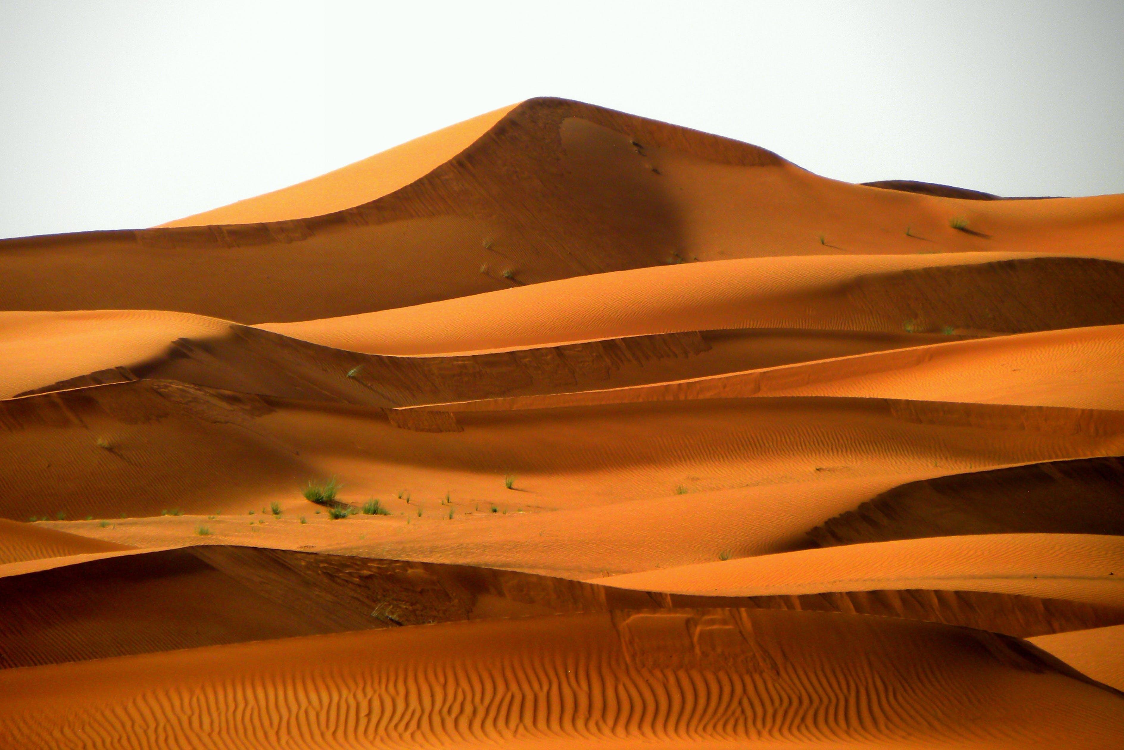 Fotobanka sbezplatnými fotkami na tému arídny, atraktívny, denné svetlo, duny