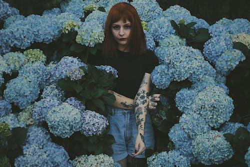 Základová fotografie zdarma na téma aranžování květin, barvy, flóra, holka