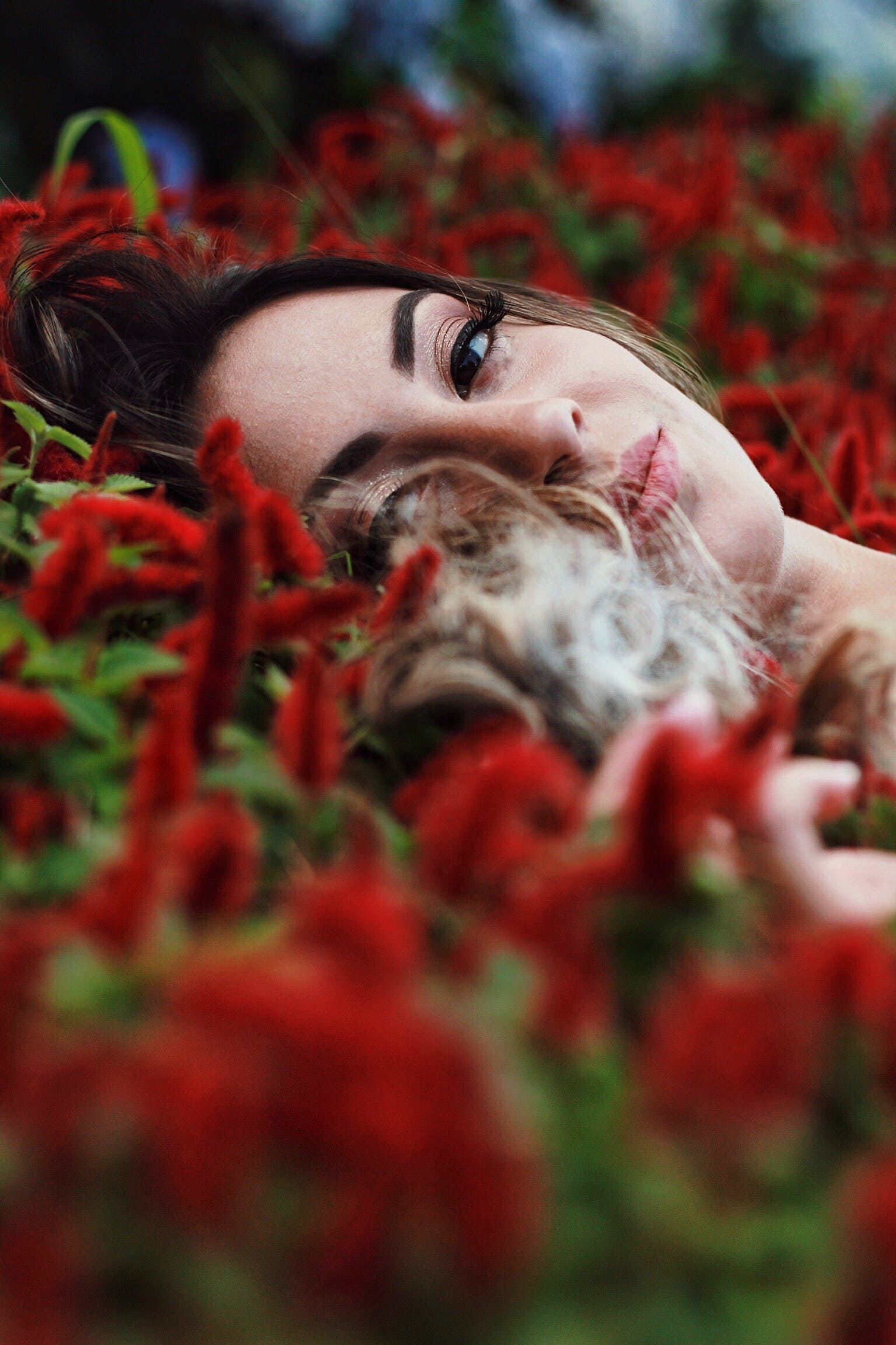 Photography of a Woman Lying on Flowers