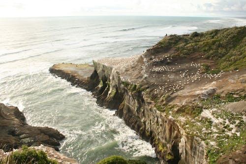 Δωρεάν στοκ φωτογραφιών με oceanshore, Surf, άκρη γκρεμού, ακτή του ωκεανού