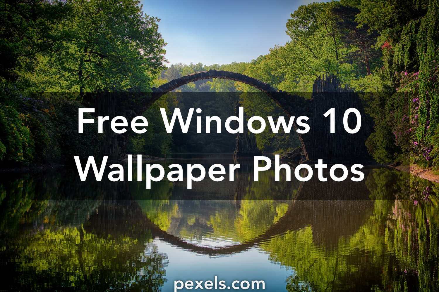 1000 Interesting Windows 10 Wallpaper Photos Pexels Free