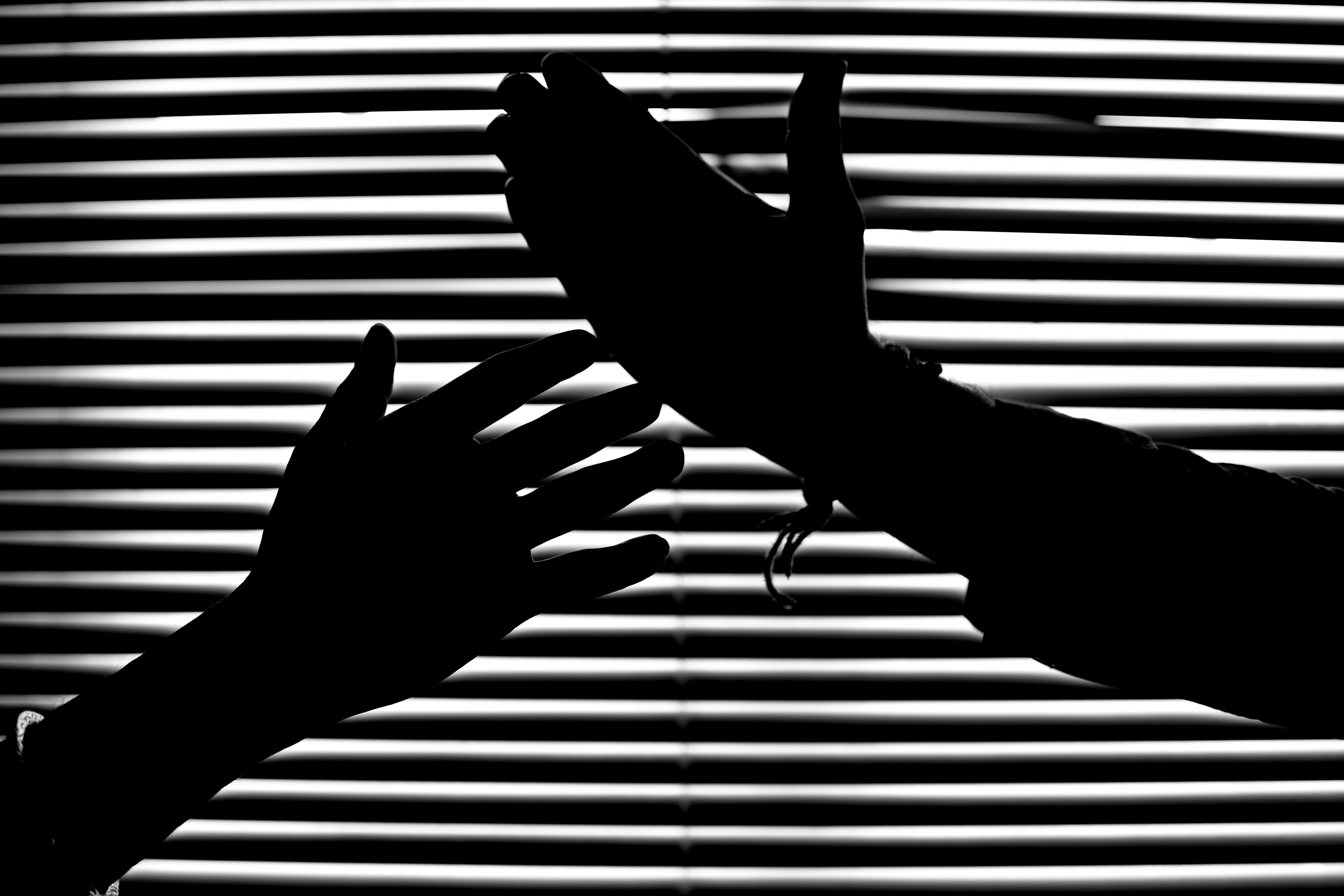 Silhouette of Hands With Venetian Blinds Background