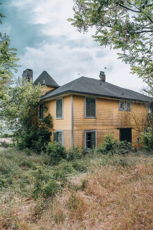 Old Wooden House Surrounded by Growing Bushes