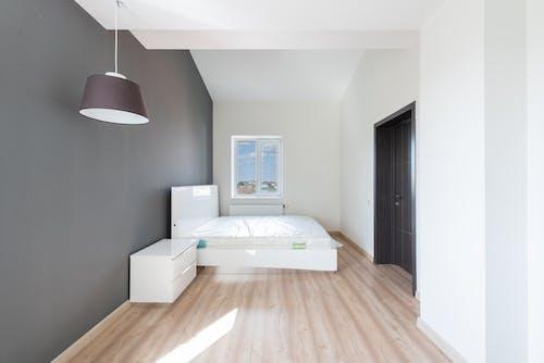 Foto profissional grátis de aconchego, apartamento, arquitetura
