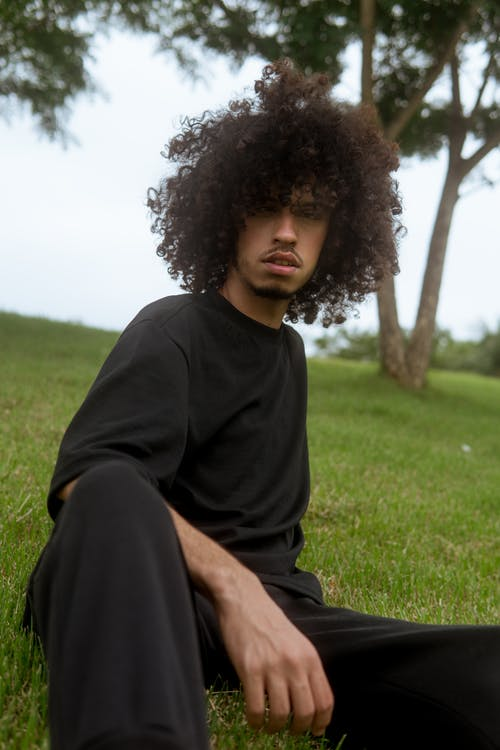 Free stock photo of adult, afro, afro hair