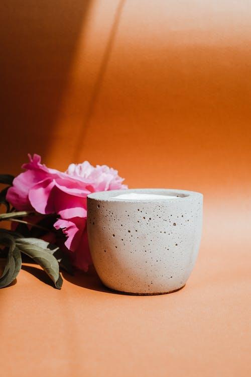 Pink Rose Beside White Ceramic Mug