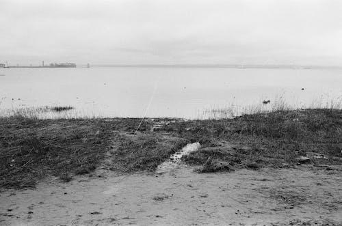 Δωρεάν στοκ φωτογραφιών με mono, ακτή, άμμος