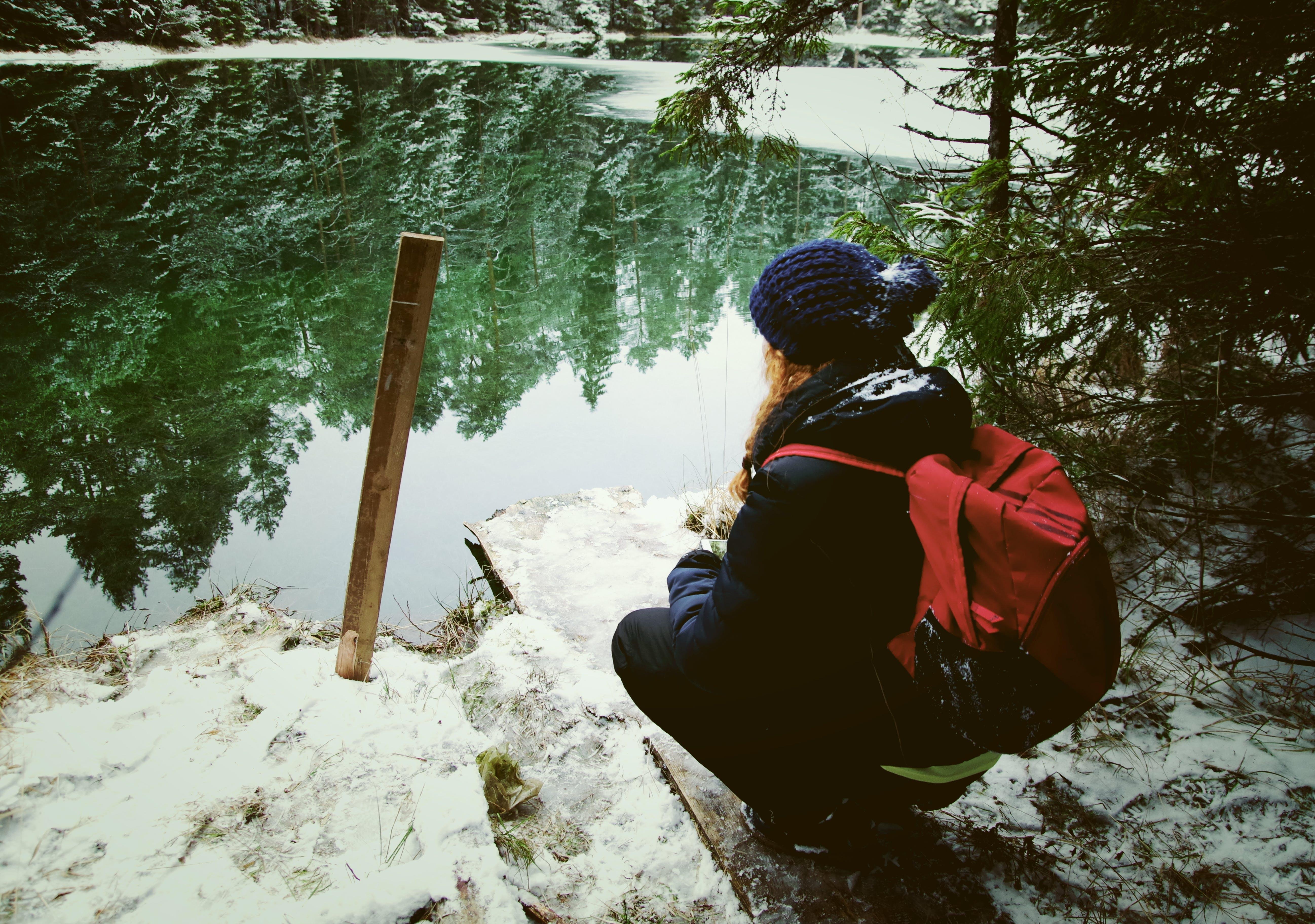 Foto d'estoc gratuïta de aigua, arbre, arbres, aventura