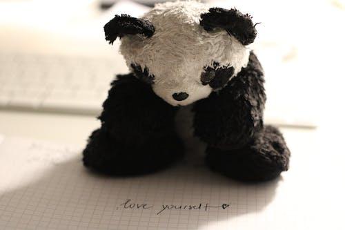 doldurulmuş oyuncak, el yazısı, gölge, hayvan içeren Ücretsiz stok fotoğraf