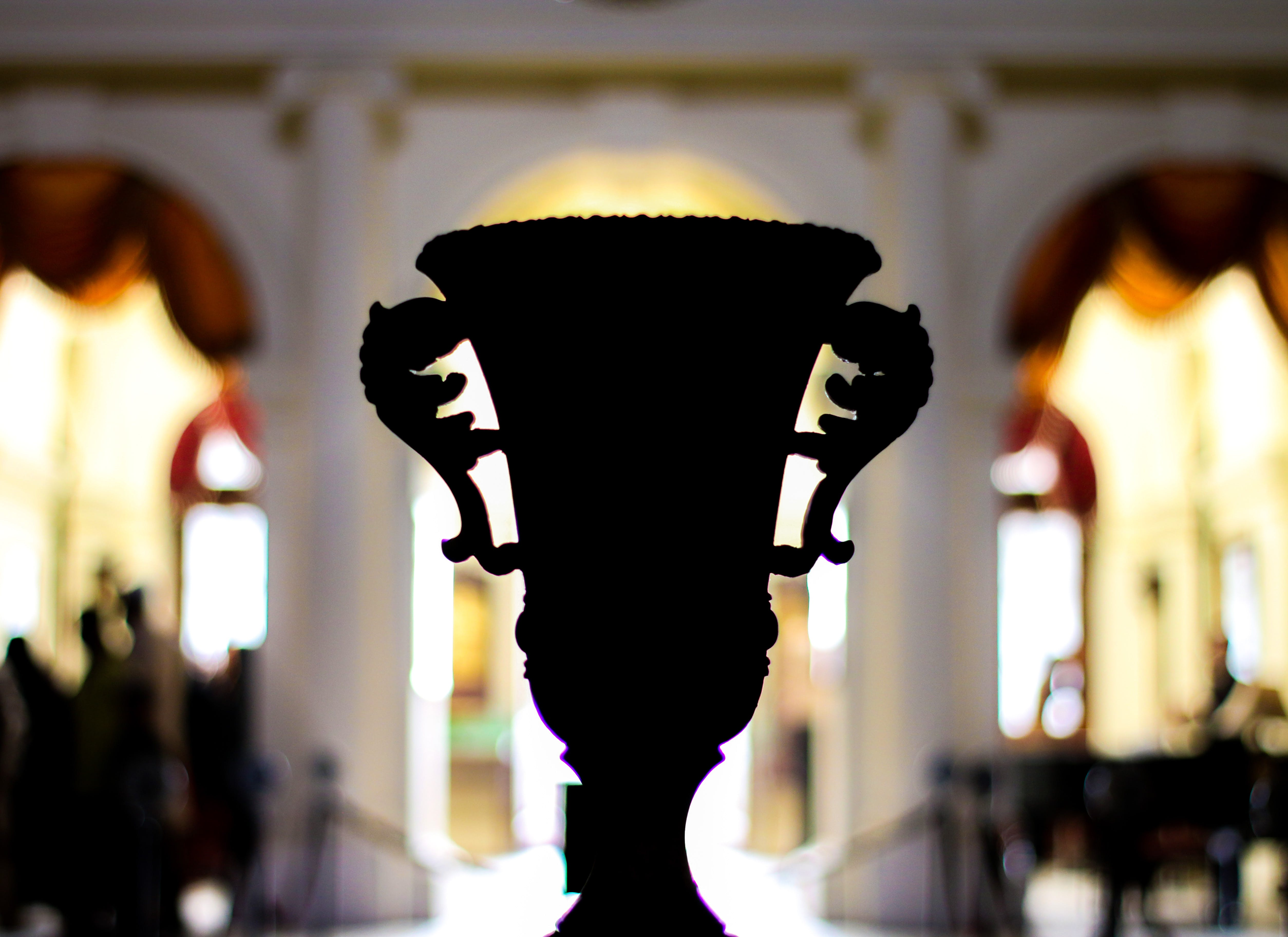 Silhouette of a Cup