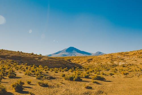 Foto d'estoc gratuïta de capvespre, cel, cel clar, desert