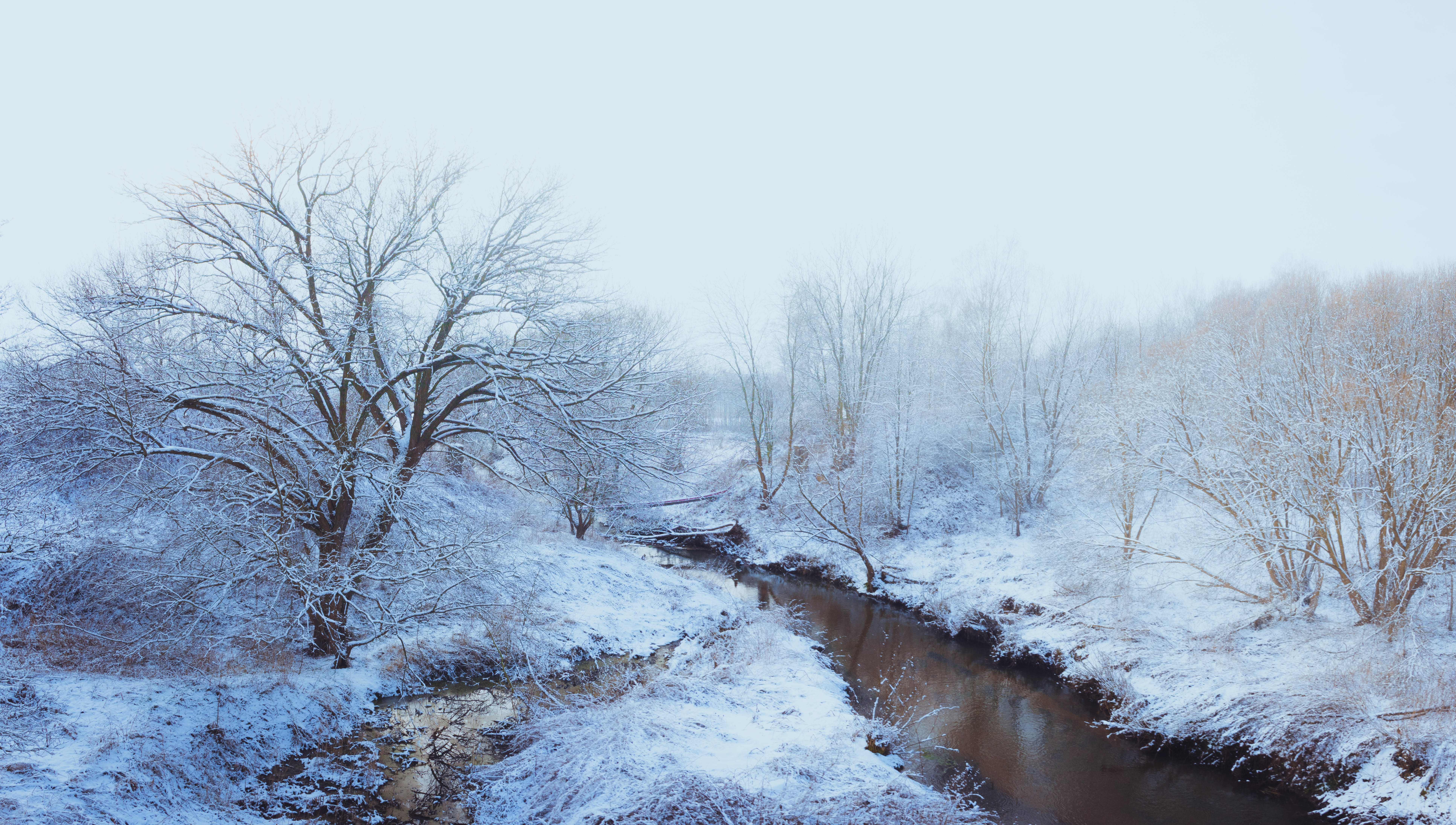 Free stock photo of foggy, landscape, panorama, river