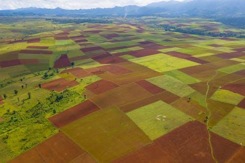 Free stock photo of field, kalaw, mandalay