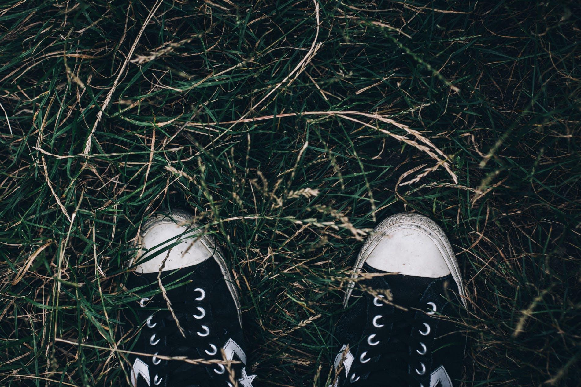 Pair of Black Sneakers