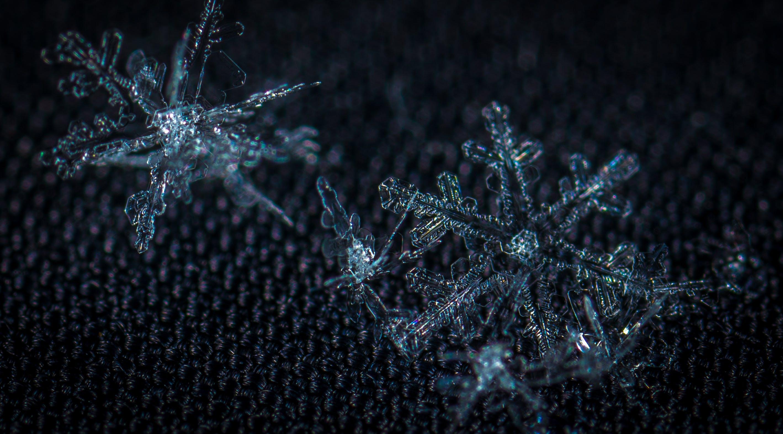 Free stock photo of snow, macro, snowflake