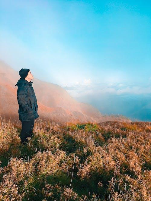 Základová fotografie zdarma na téma fotografie přírody, Grónsko, hora, matka příroda