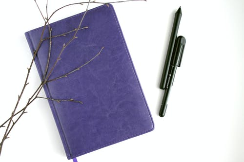 Purple Leather Notebook, Black Pen, and Brown Branches