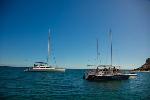 Free stock photo of boats, cabo san lucas, catamaran
