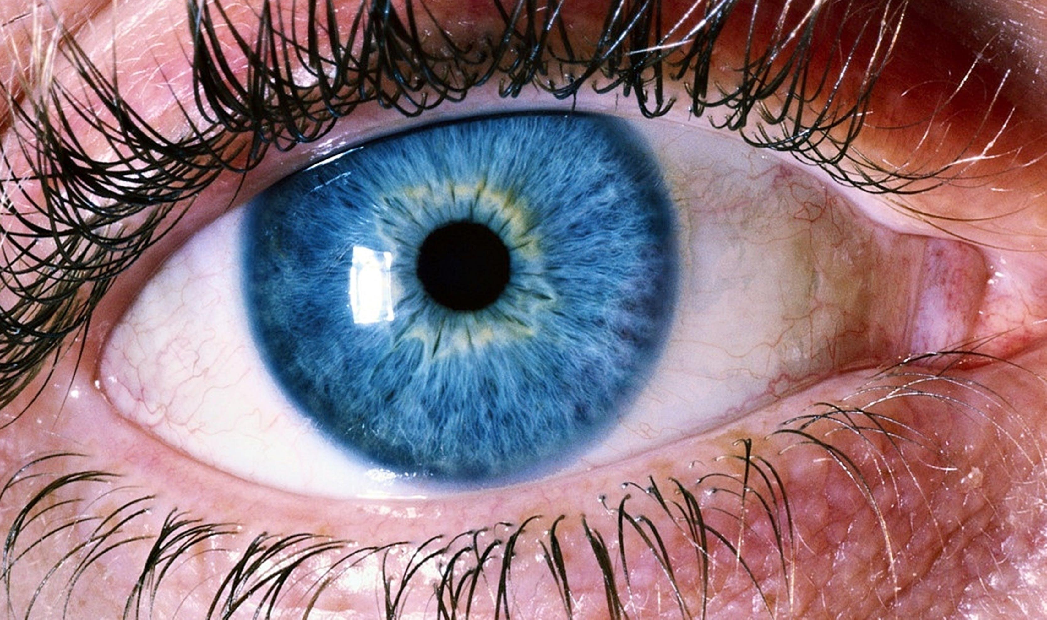 Immagine gratuita di bulbo oculare, ciglia, colori, occhi azzurri