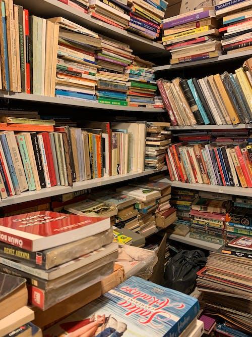 Бесплатное стоковое фото с книги, книжные полки, коллекция