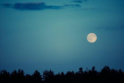 晚上, 月亮 的 免費圖庫相片