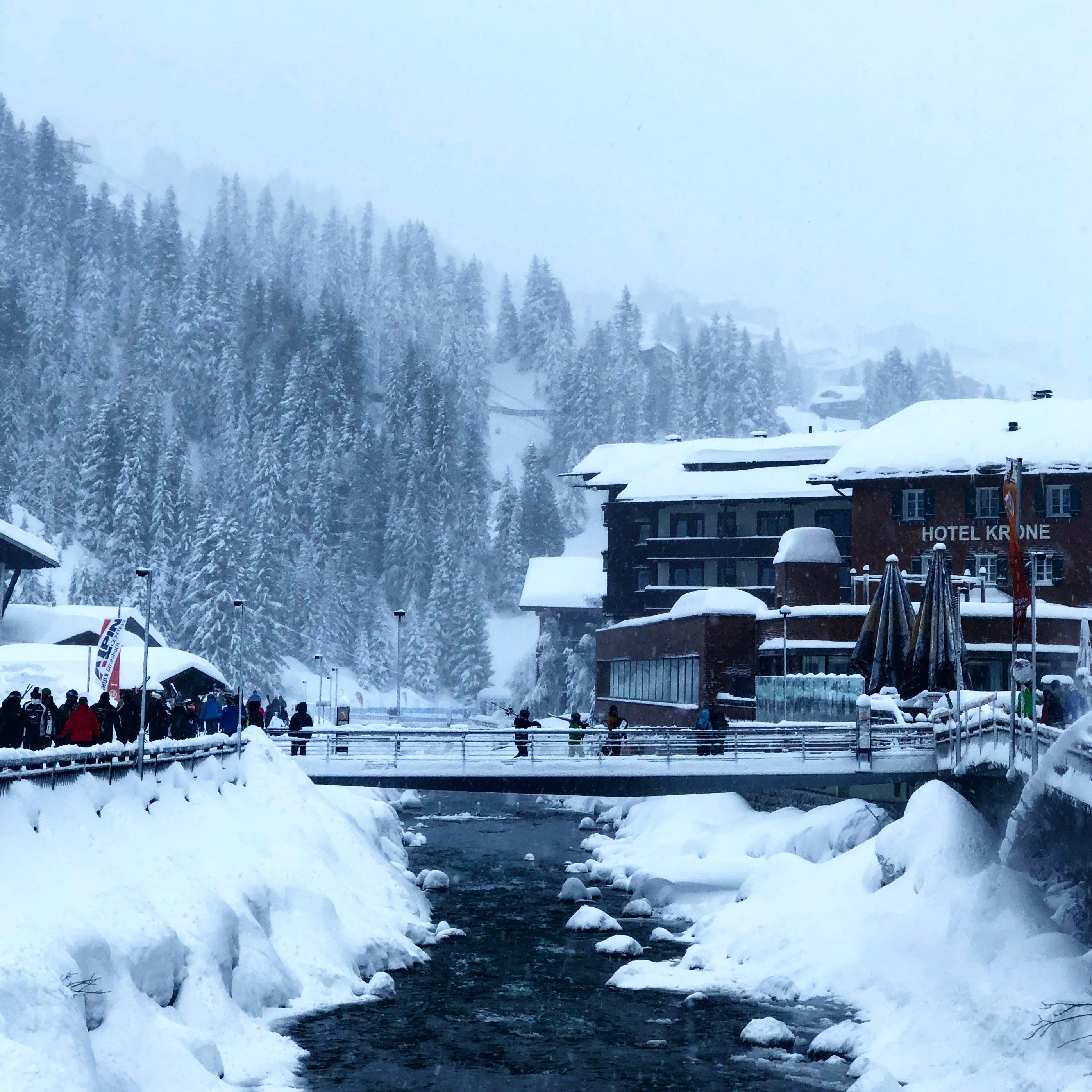 Gratis stockfoto met bevroren, bomen, boot, bossen