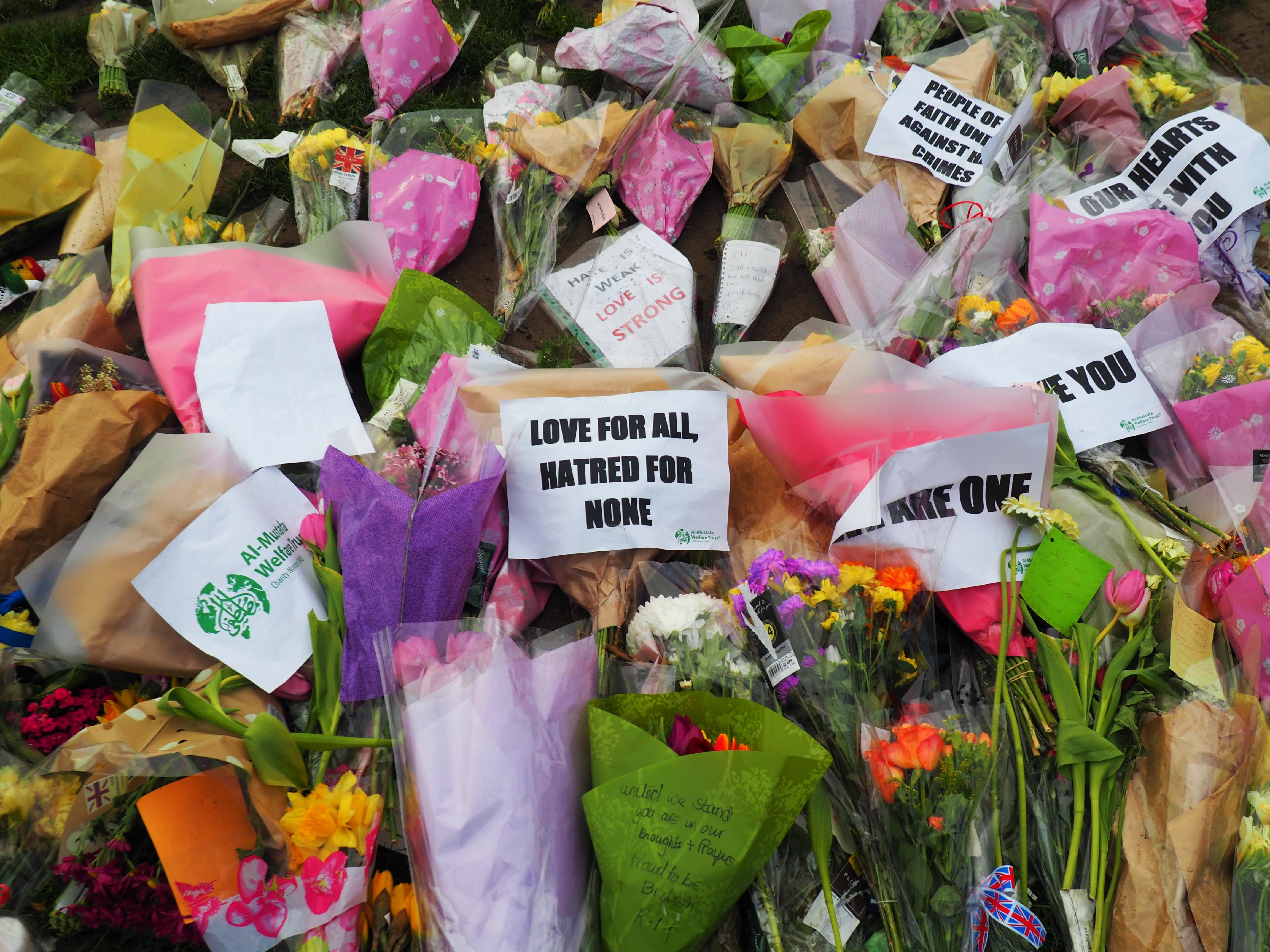 Free stock photo of england, flowers, great britain, Hatred for none