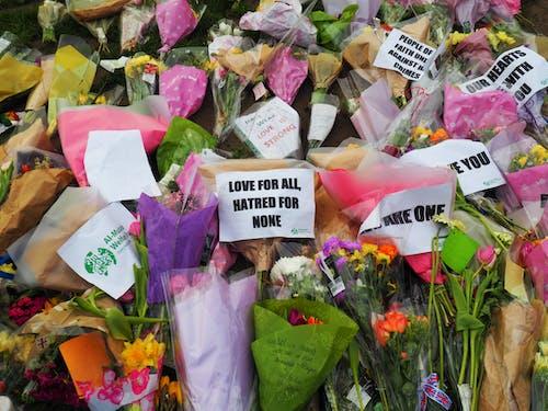 仇恨无人, 倫敦, 大不列顛, 威斯敏斯特 的 免费素材照片