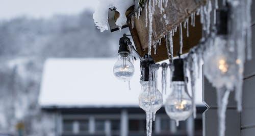 açık hava, ampuller, asılı, asılmak içeren Ücretsiz stok fotoğraf