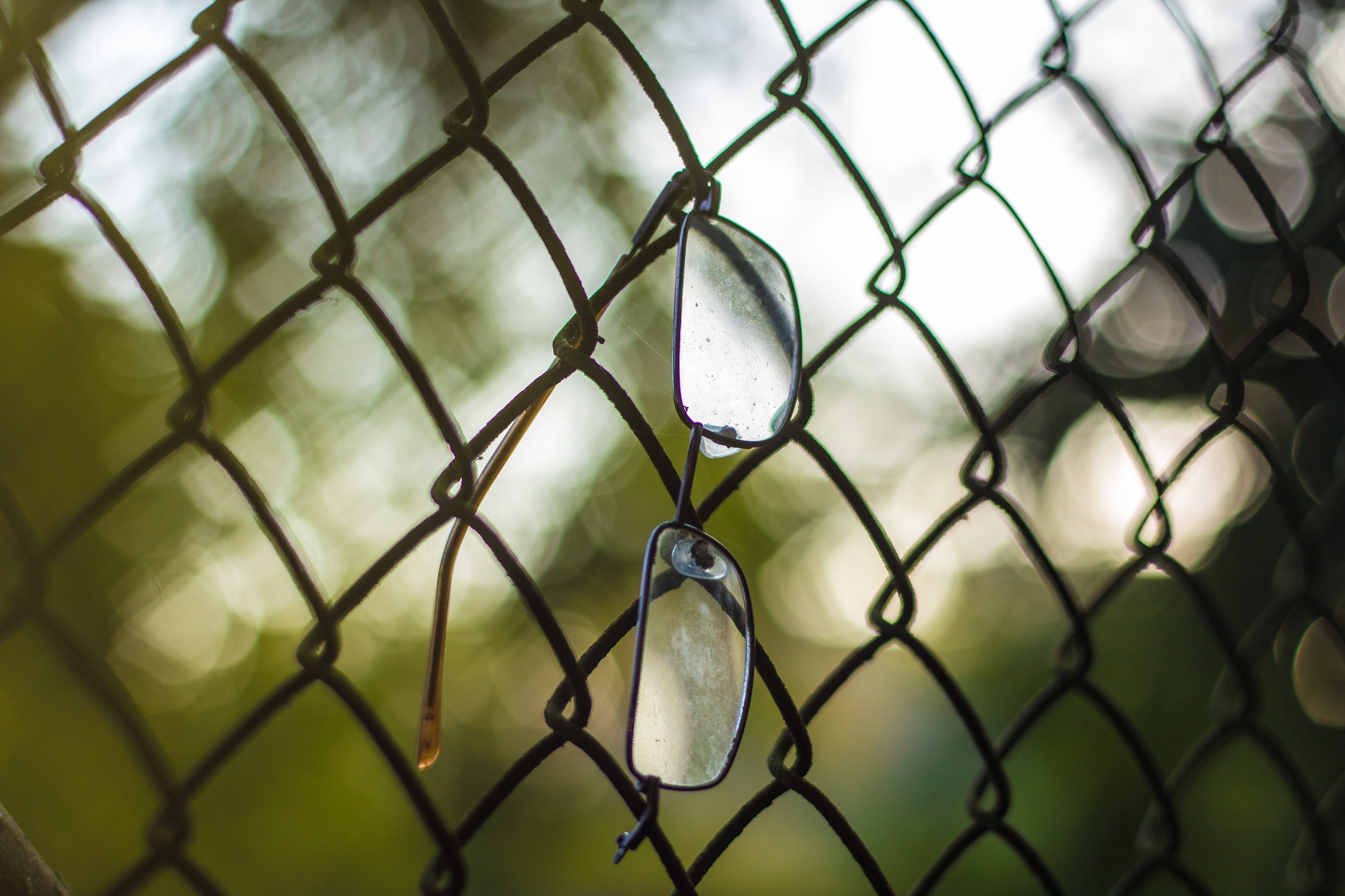 Free stock photo of evening sun, eye glasses, fence
