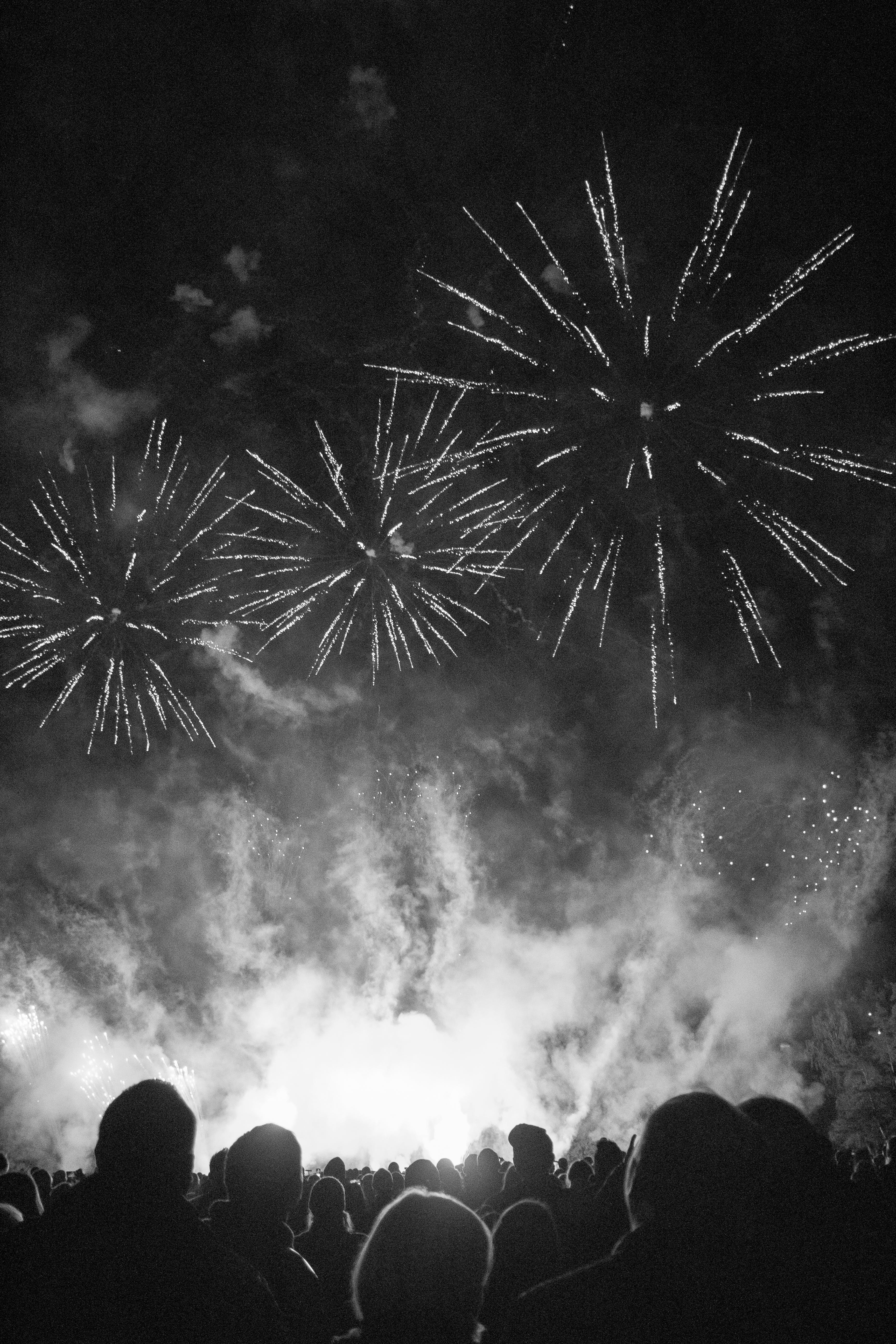 Free stock photo of black and white, city, city park, festival