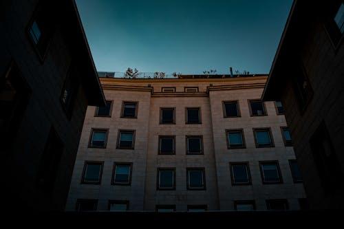 Gratis stockfoto met architectuur, fel, gebouw