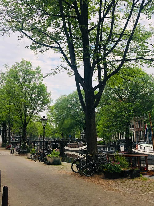 amsterdam, Flemenkçe, Hollanda içeren Ücretsiz stok fotoğraf