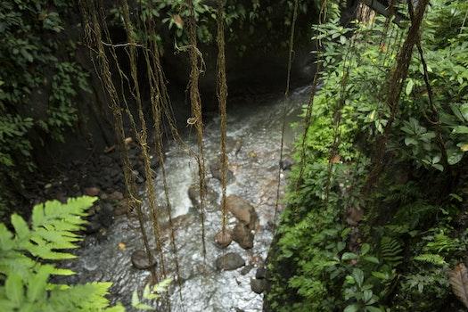 Kostenloses Stock Foto zu landschaft, natur, wasser, felsen