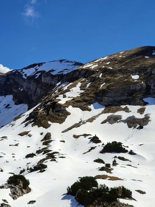 Gratis lagerfoto af bjerg, bjergtinde, dagslys
