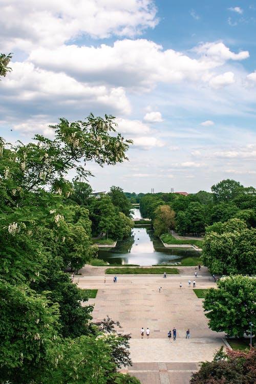 açık hava, ağaç, Bahçe içeren Ücretsiz stok fotoğraf