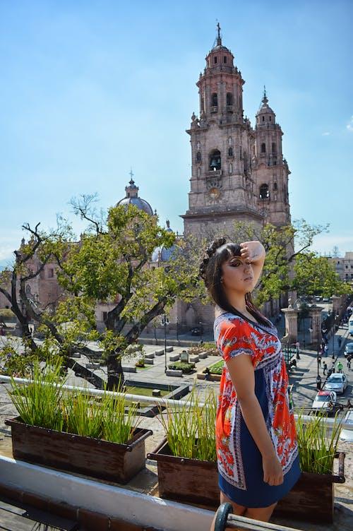 Foto d'estoc gratuïta de arbre, catedral, Església, maquillatge